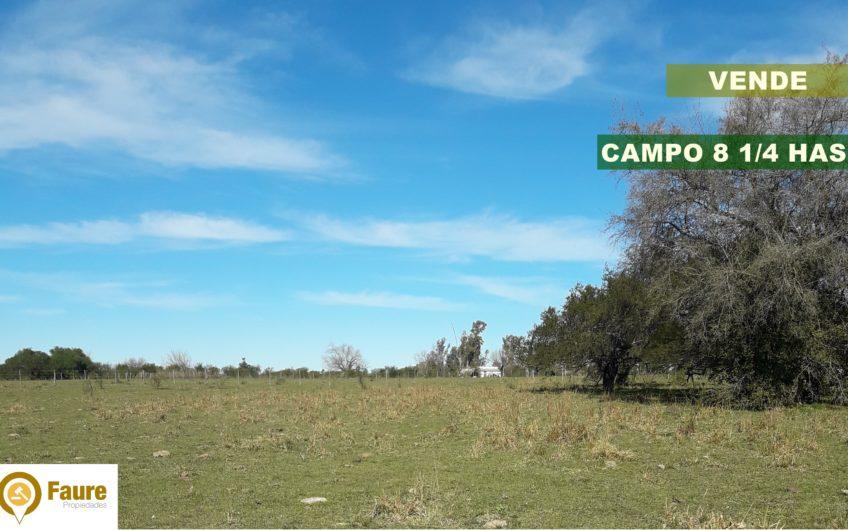 CAMPO 8, 1/4 hectáreas A 2 km de Ruta 135.